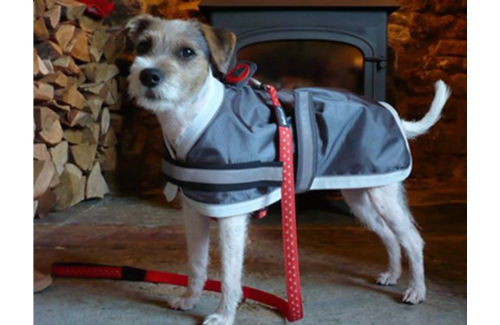 Oxford Reflective Dog Coat